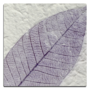 Paper Kozo - Fossil Leaf Purple